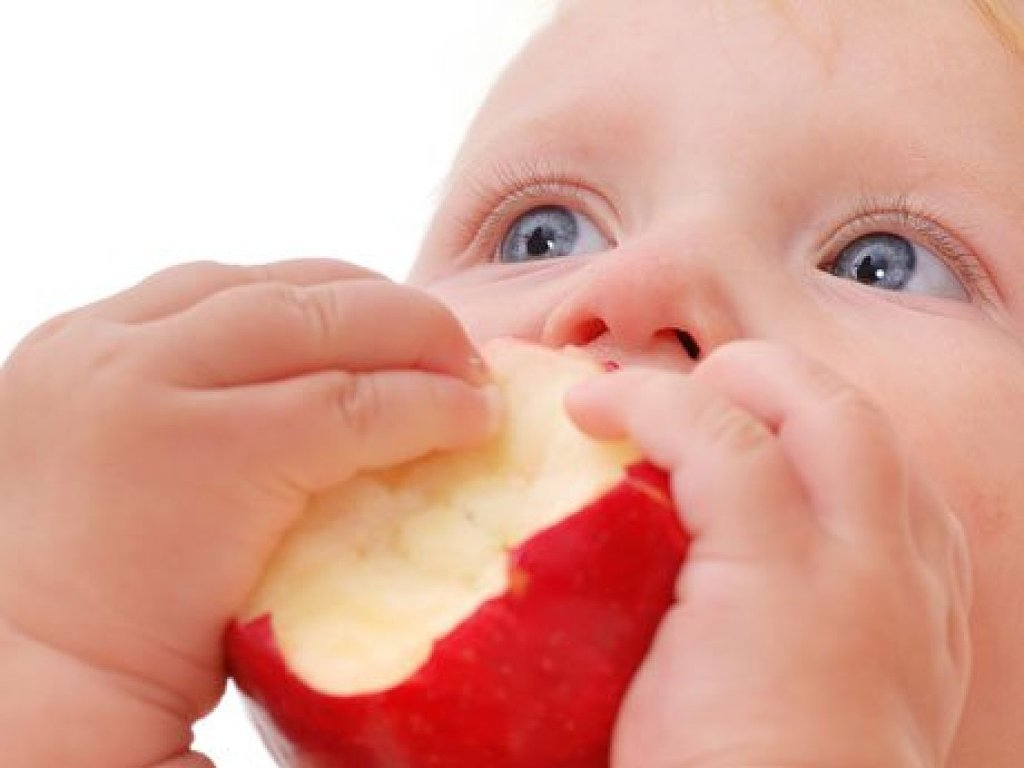 301 moved permanently - Alimentacion bebe 7 meses ...